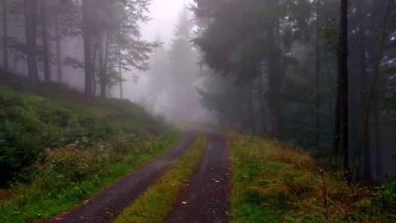 Onto the fog
