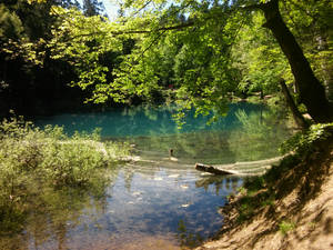 Copper blue lake