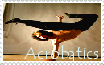 I love Acrobatics Stamp by TKDshadow