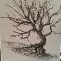 Winding Oak by donaldhoward58