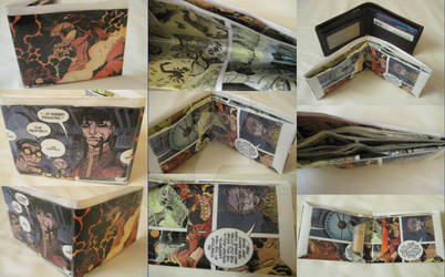 'To Breed Dragons' Wallet by toadking07