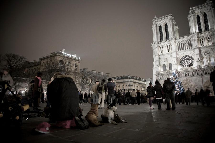 Homeless Notre Dam by danielgregoire