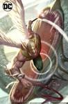 DC comics Hawkman13