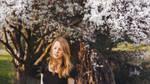 beginnings are tedious by Rona-Keller