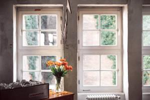 office love by Rona-Keller
