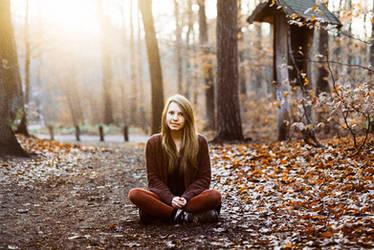at the end of November VI by Rona-Keller