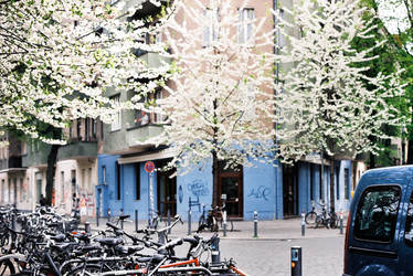 spring in the city by Rona-Keller
