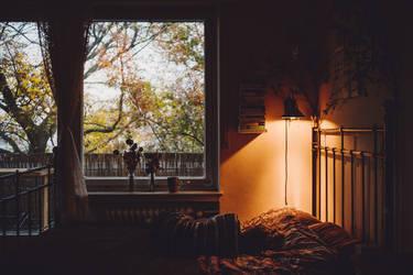 the beginning of November by Rona-Keller