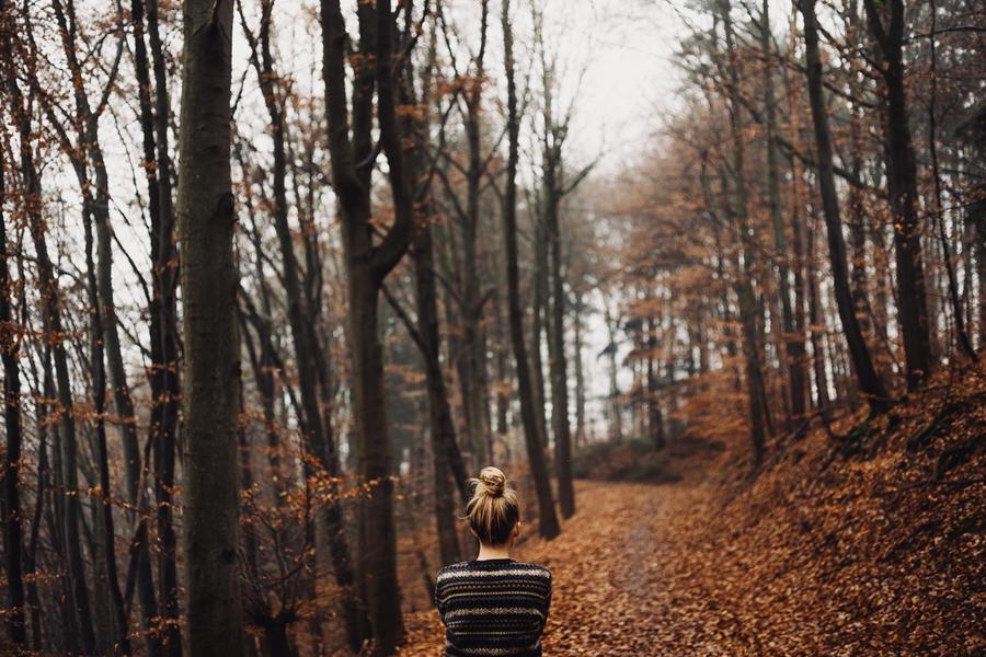 foggy days, inner urge by Rona-Keller
