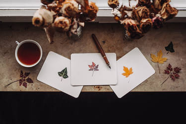 autumn leaves by Rona-Keller