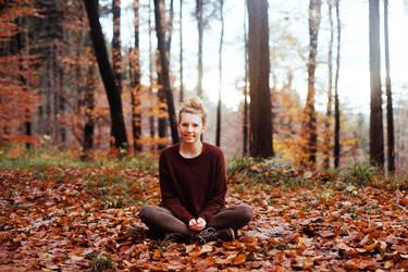 at the end of November VIII by Rona-Keller