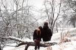 a mid winter walk