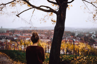 wrapped inside November rain by Rona-Keller