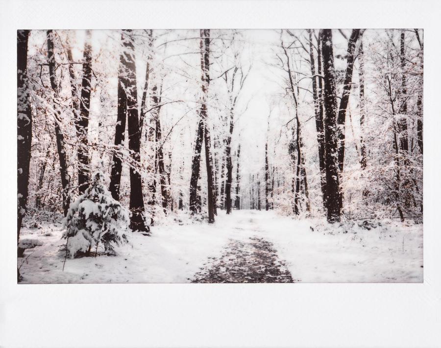 05/02/2018 by Rona-Keller
