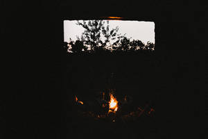 shared summer nights by the fire