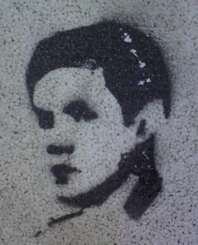 frees's Profile Picture