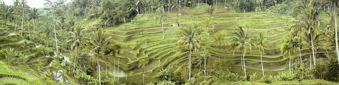 Bali 04 by Ady333
