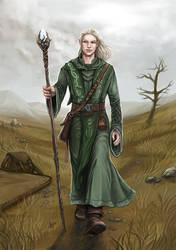 Commission: Aelindir von Lowangen (DSA) by Neferu