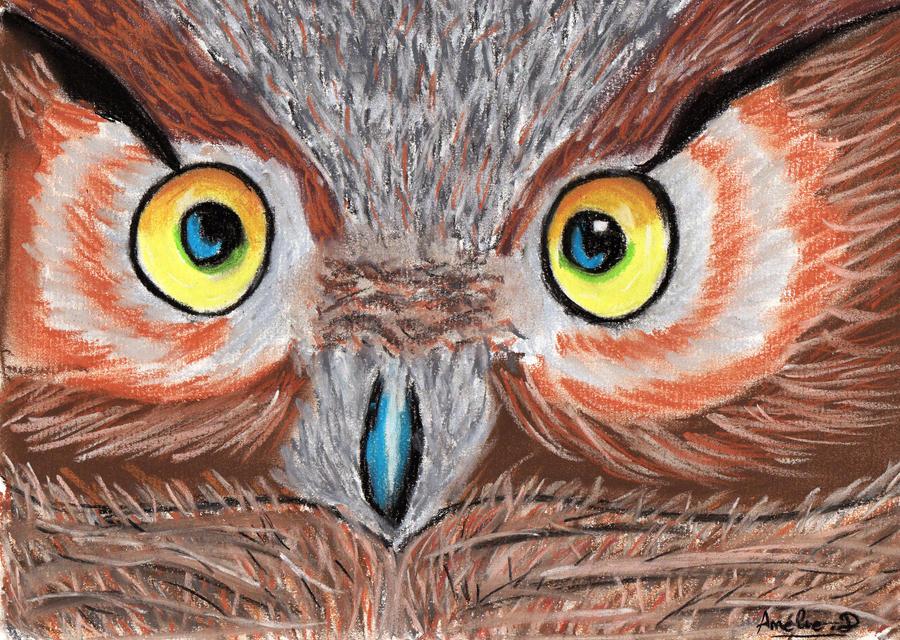 Owl. by Amel-Yudzi