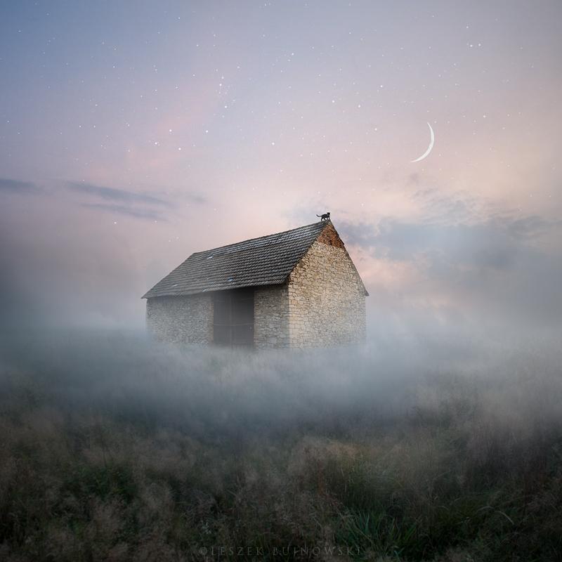 Starry night by Alshain4