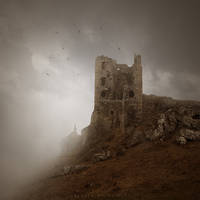 Raven stone III by Alshain4