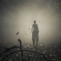 Through the autumn by Alshain4