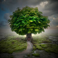Green house by Alshain4