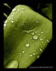 rain drops in green by yuya-yo