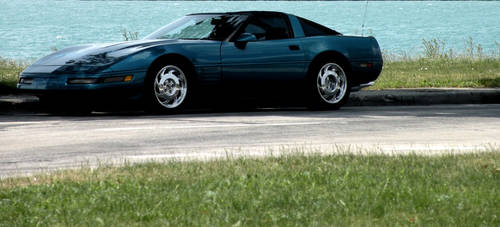 Corvette by CarnivorousAvenues