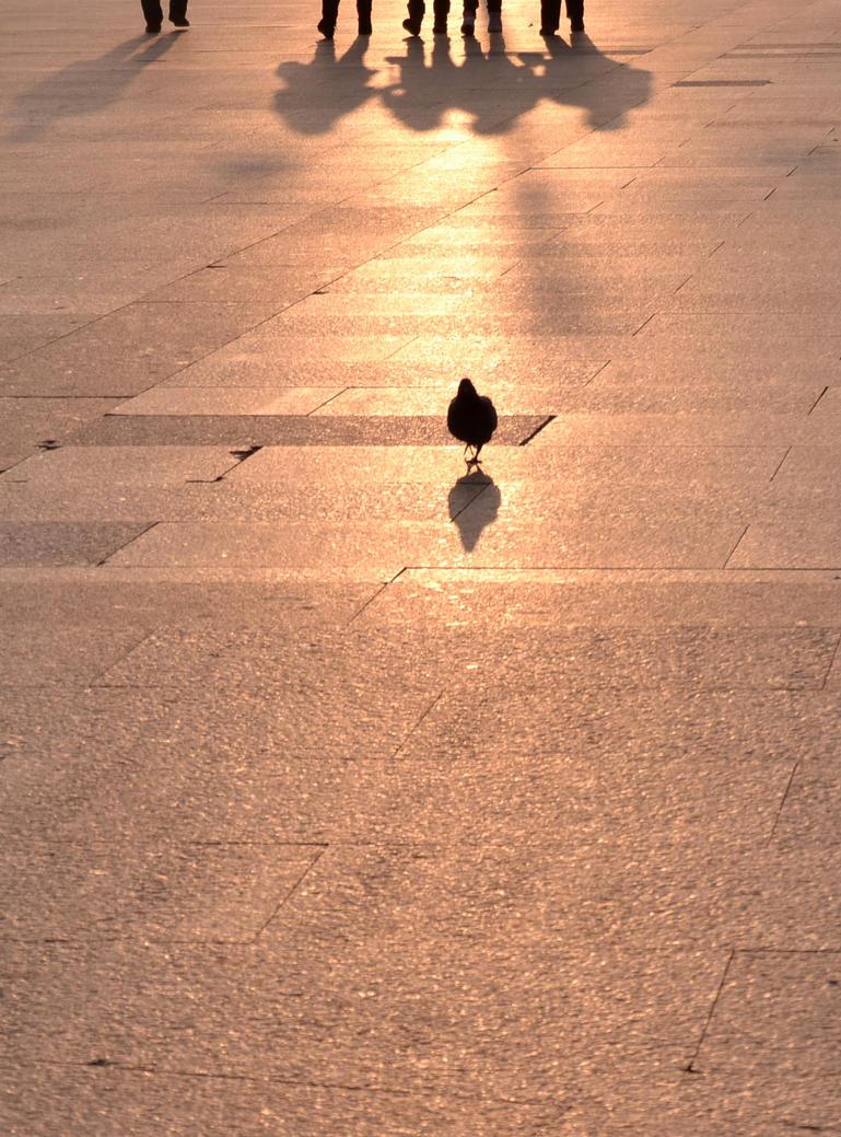 un dia en la vida by gardeenofdreams