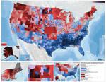 2016 Democratic Presidential Primary by ToixStory