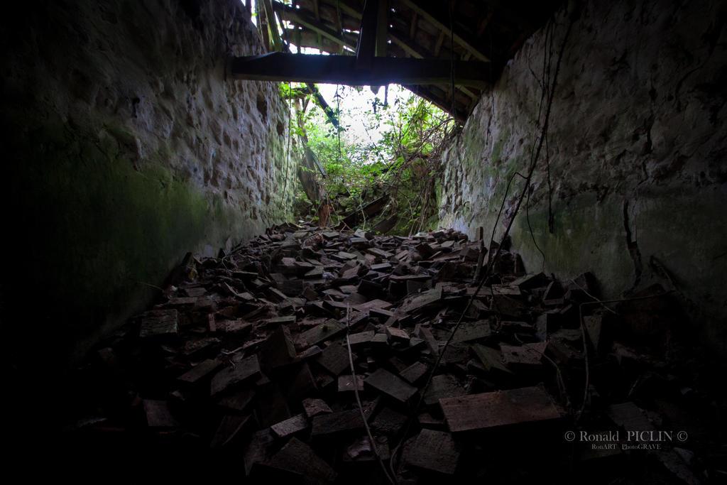 Les briquettes by roon1305