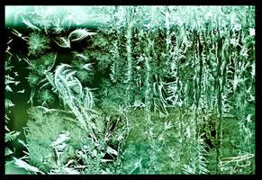 Frost bird 2009 by Murklins