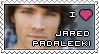 Jared Padalecki Stamp by glomdi