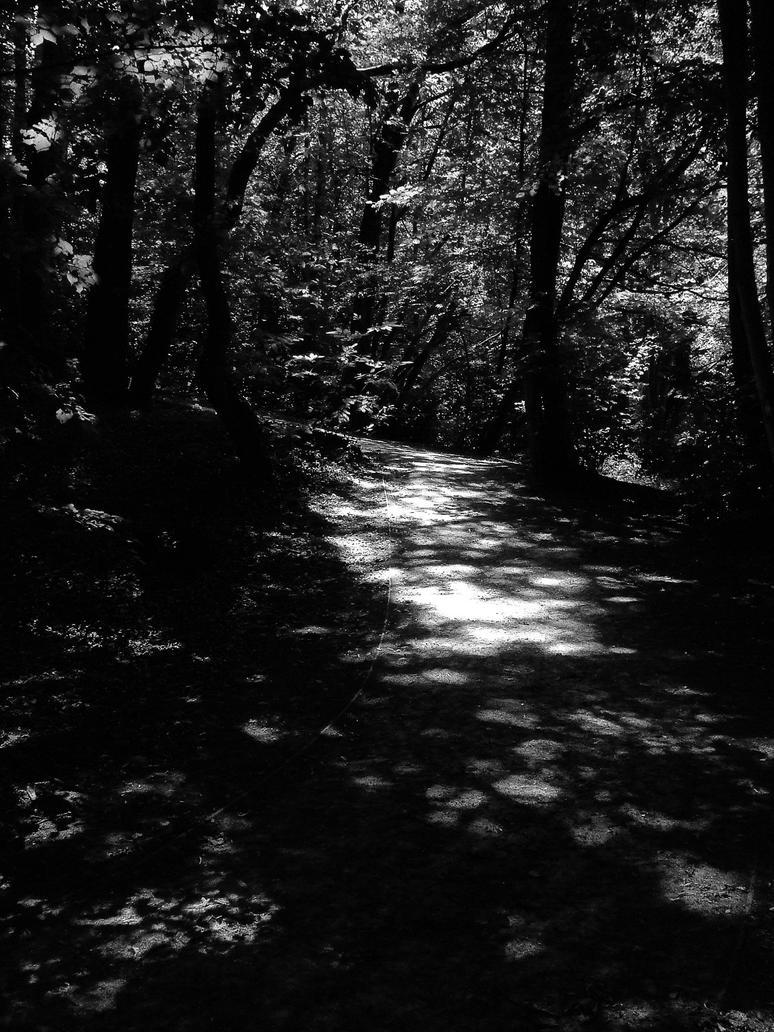 Light and shadows by RealPanda