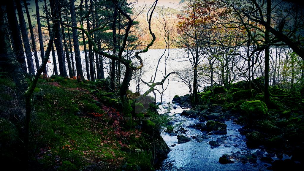 Lakeside Creek  - Enchanted Brook by vee-kay