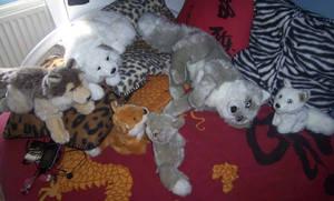 WWF Canid plushies by CyanFox3