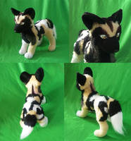 African wild dog: finished by CyanFox3