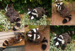 SOLD - Brown raccoon - small floppy