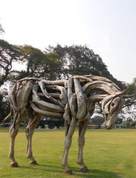 Driftwood horse in full appearance