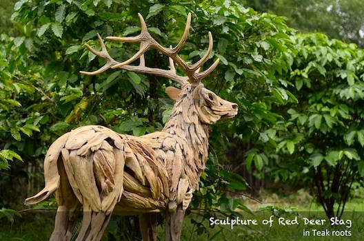 RED DEER STAG TEAK ROOTS SCULPTURE