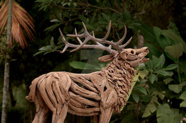 ROARING STAG TEAK ROOTS SCULPTURE