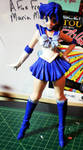 Sailor Mercury Model