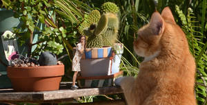 Emma and the cat 2