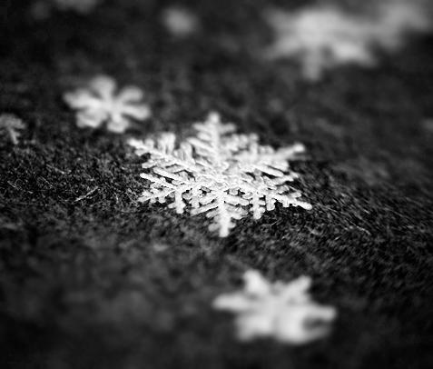 snow by Bromelia94