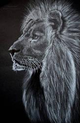 *Lion*