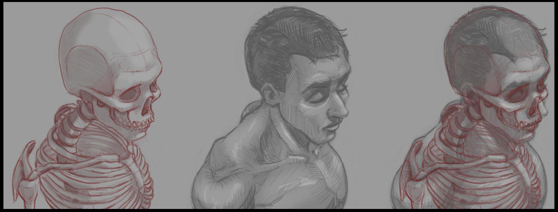 Anatomy Study - No Reference by LucasZebroski