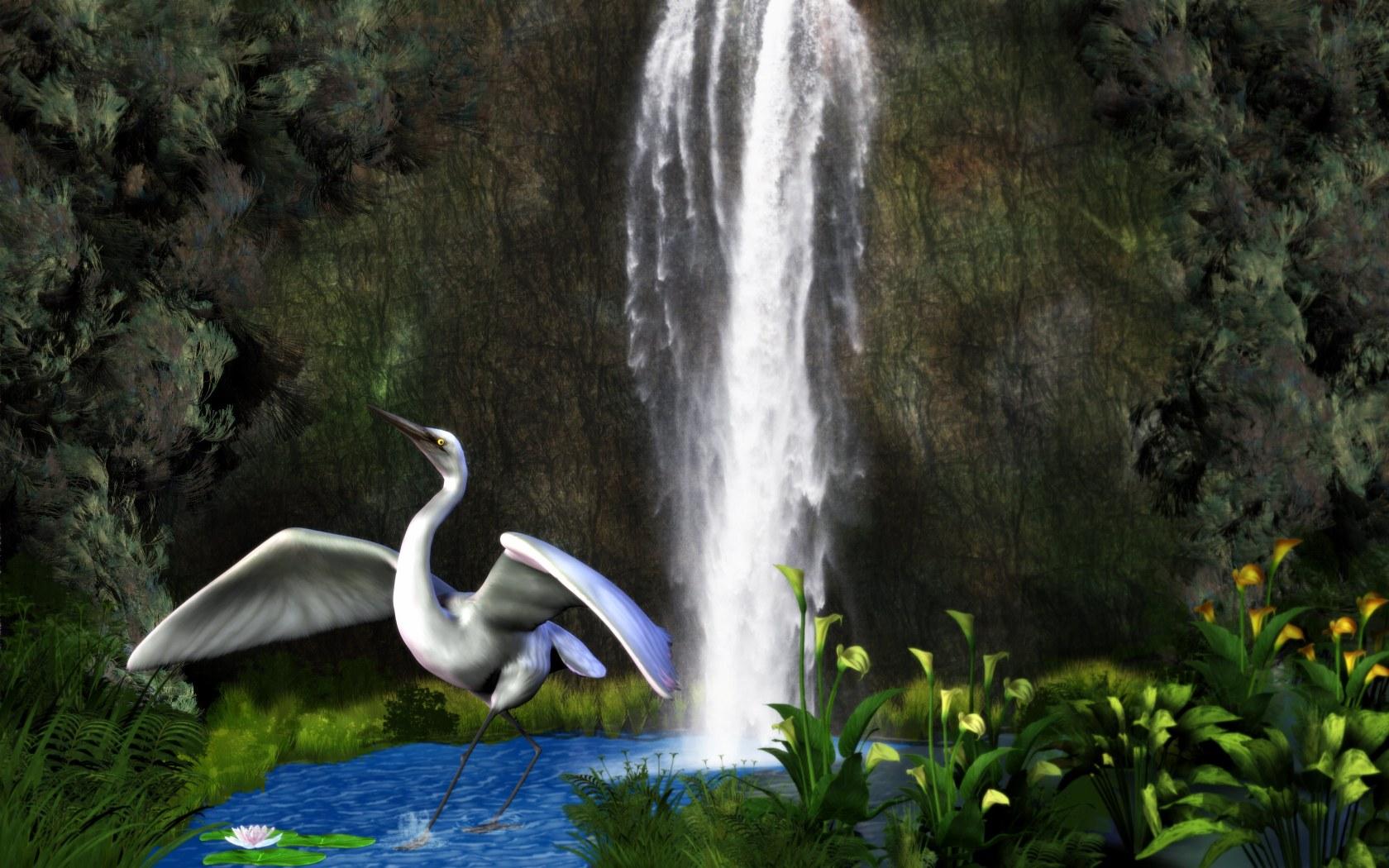 Egret by mainbearing
