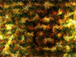 Autumn by mainbearing