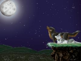 Moonlit Howl by chibiyin